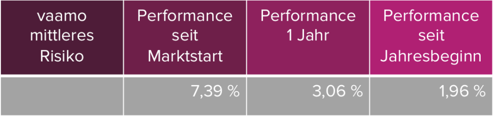 Performance_vaamo